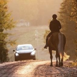 Pferd und Reiterin vor entgegenkommenden Auto