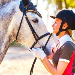 Pferd und Reiterin gucken sich an