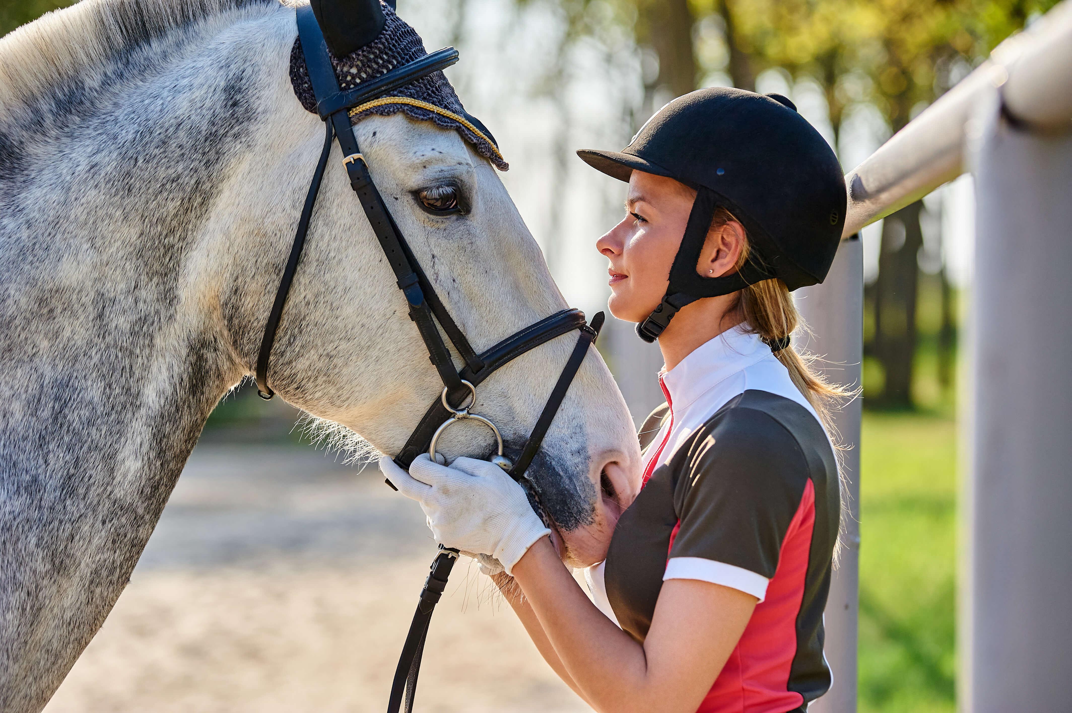 Frau und Pferd schauen sich an; Pferdekauf