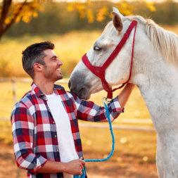 Pferd und Mann