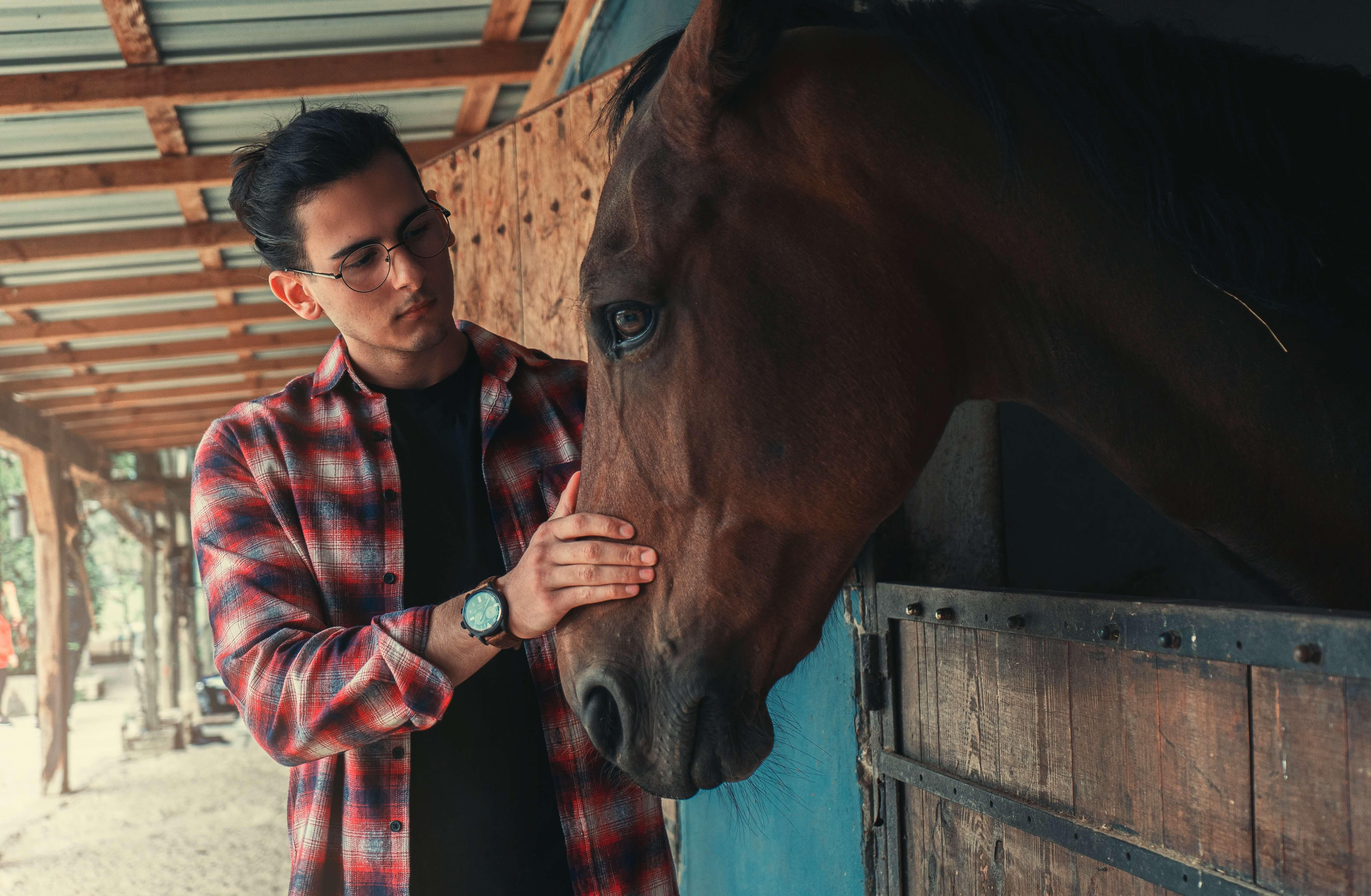 Reiter und Pferd in der Corona Pandemie, Stallbesuche mit Anwesenheitslisten