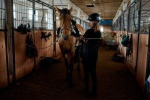 Pferd und Reiter in der Stallgasse